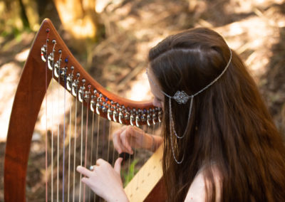 Harp smaller