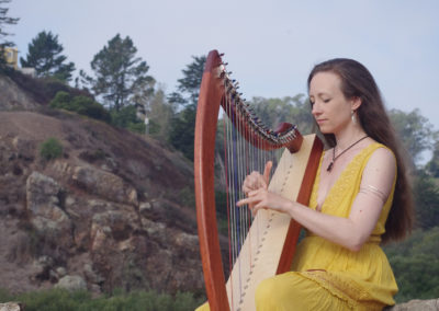 IMG Harp 2ret
